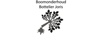 Joris Bottelier